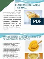 Proyecto Harina de Maiz