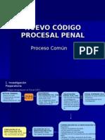 Proceso Comun NCPP