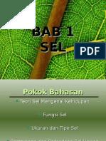 BAB 1 SEL