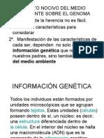 CLASE Efecto Nocivo Del Medio Ambiente Sobre El Genoma
