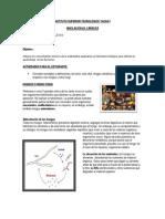 Experimento Del MOHO - Funciones (Pilataxi)