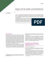 Acceso quirúrgico de la unión cervicotorácica.pdf