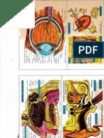 IMG_20150801_0001.pdf