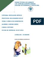 Clinica en Animales Geriatricos