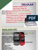 trabajo+de+power+point+tecnologia.ppt.pps