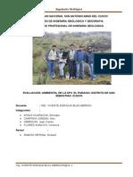 impacto ambiental de APV Paraiso