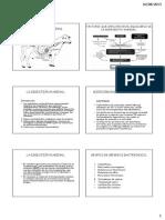 5 Digestion Ruminal-noriega [Modo de Compatibilidad]