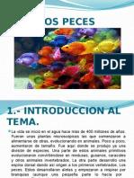 LOS PECES      TRABAJO FINAL RODRIGO LOS PECES.pptx