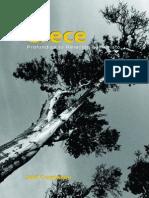 CRECE-JOEL COMISKEY.pdf