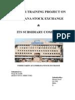 Ludhiana Stock Exchange.doc