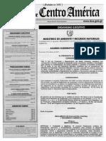 Acuerdo Gubernativo 60-2015