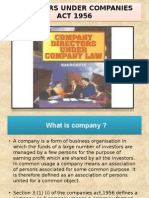 Law Ppt (director companies act)