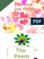 wind and window flower.pptx