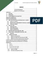 Monografia de Crm y E- Crm