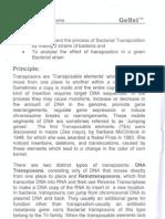 Bacterial Transposons Kit Protocol_Genei
