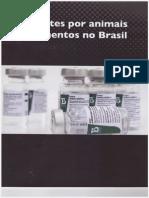 Acidentes Por Animais Peçonhetos No Brasil