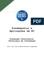Fundamentos e Aplicações de BI