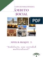 Social Nivel II-b7