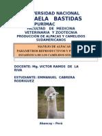 MANEJO DE ALPACAS.docx