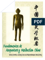 Fundamentos de Acupuntura y Moxibustion China