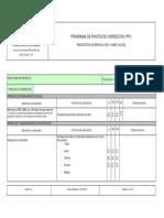 Ejemplo Programa de Puntos Inspeccion Ppi