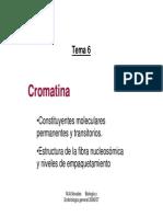 Tema 6 Cromatina