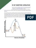 Mechanism of Enzyme Catalysis Madhu