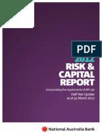Credit Risk Report Template