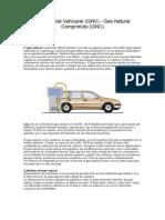 Gas Natural Vehicular.docx