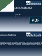 Anatomia de craneo .pptx