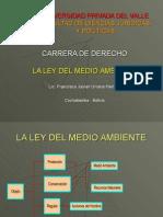 Presentación LEY 1333