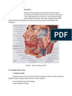 Anatomi Kelenjar saliva.docx