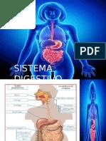 digestivo unvime