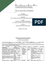 proceso enfermero.pdf