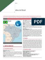 Brasil Ficha Pais
