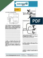 MATERIAL_20131023002237ExerciciosRepteisAvesMamiferos.pdf