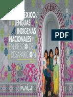 Libro Lenguas Indigenas Nacionales en Riesgo de Desaparicion