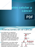 Adhesión celular y cáncer.pptx