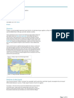 IEA Turkey 2015 Report