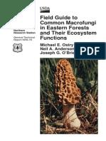 Field Guide to Common Macrofungi