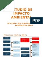 estudiodeimpactoambiental2012-.pptx