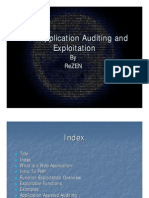 Web Application Auditing and Exploitation