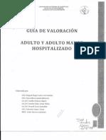 Guia de Valoracion.pdf