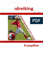 Handreiking D Pupillen