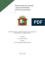 historia natural, cadena epidemiologica y niveles de prevencion de la fiebre amarilla.doc