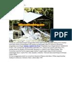 Pengolahan Bijih Emas Carbon in Pulp