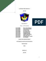 LAPORAN PBL GERIATRI FK UMI 2012