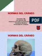 Normas Del Craneo