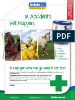 Kelato Emergency First Aid Kit A4 Flyer
