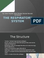 Respiratory Presentation.pptx
